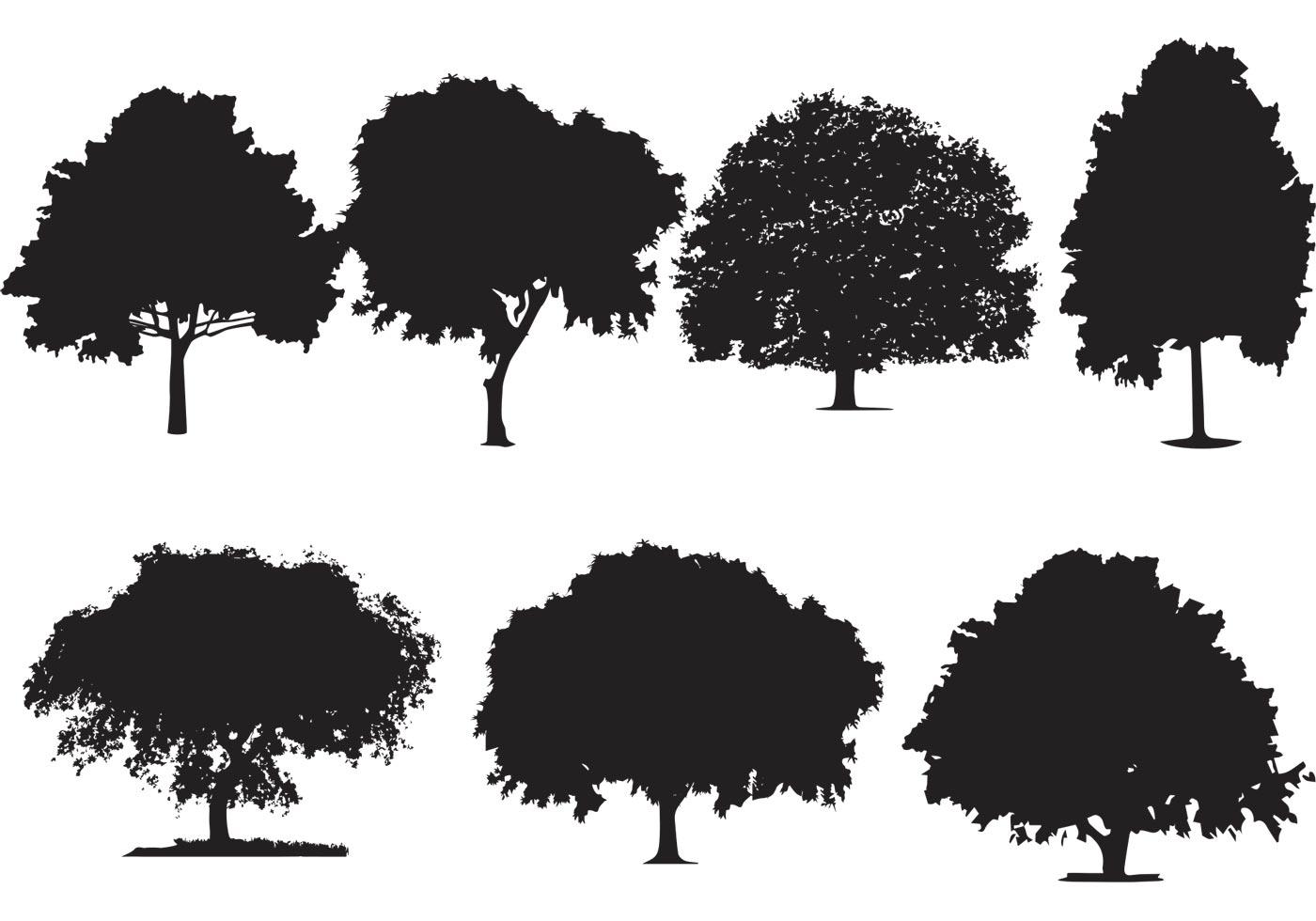 1400x980 Oak Tree Silhouette Vectors