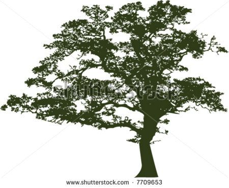 450x370 Oak Tree Black White Free Vector For Free Download About (6) Free