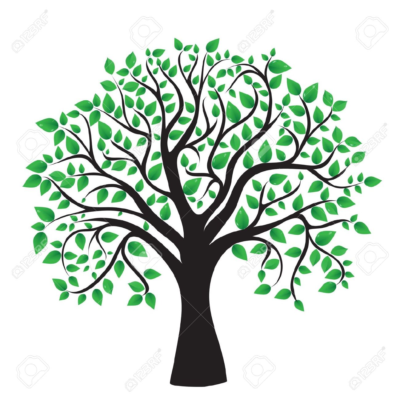 1300x1300 Tree Vector Free Gallery Images)