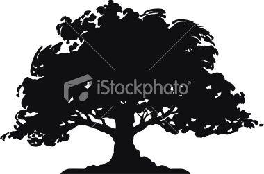 380x251 Download Vector About Oak Tree Vector Item 8 , Vector