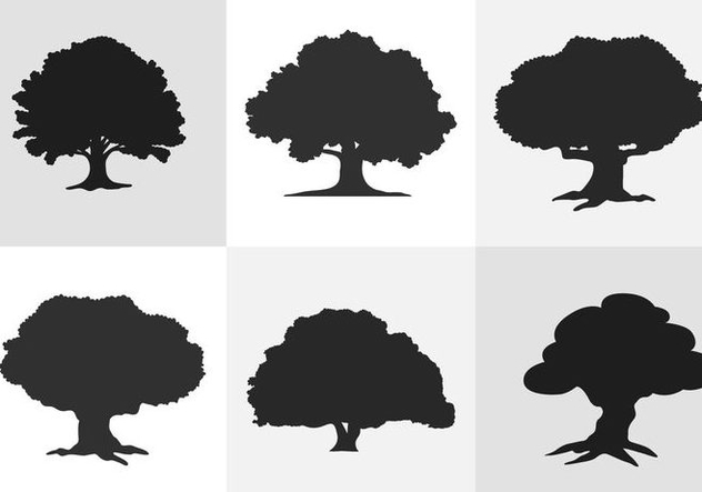 632x443 Oak Tree Silhouette Free Vector Download 334627 Cannypic