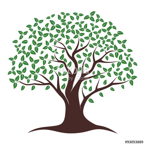 500x500 Oak Tree Vector Stock Image And Royalty Free Vector Files On