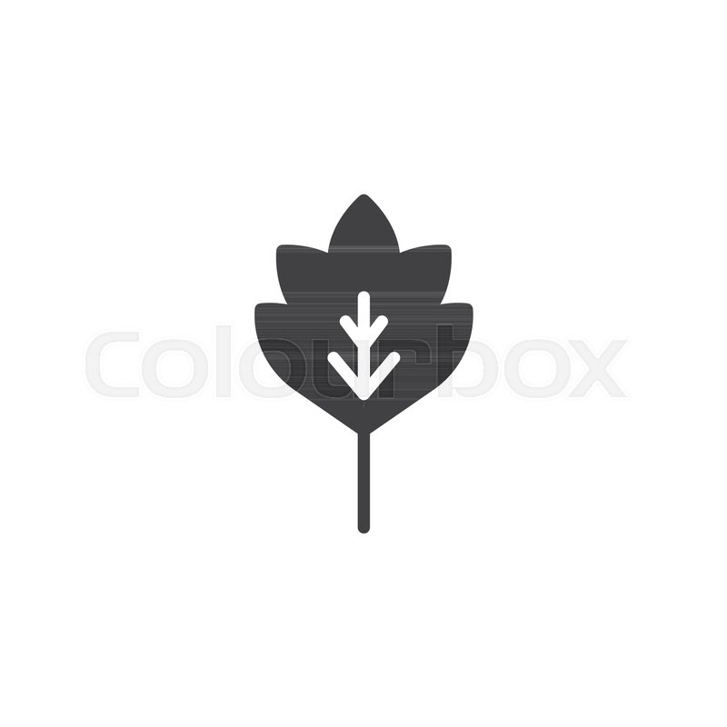 800x800 Oak Leaf Vector Icon. Filled Flat Sign For Mobile Concept And Web