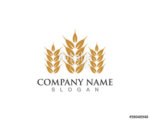 500x400 Oat Rice Symbol Finance Logo Stock Image And Royalty Free Vector