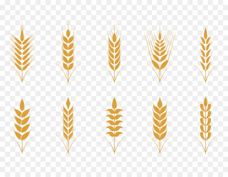 900x700 Oat Cereal Wheat Icon