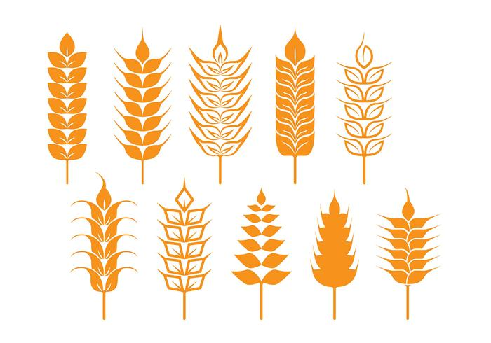700x490 Oat And Wheat Stalk Icons