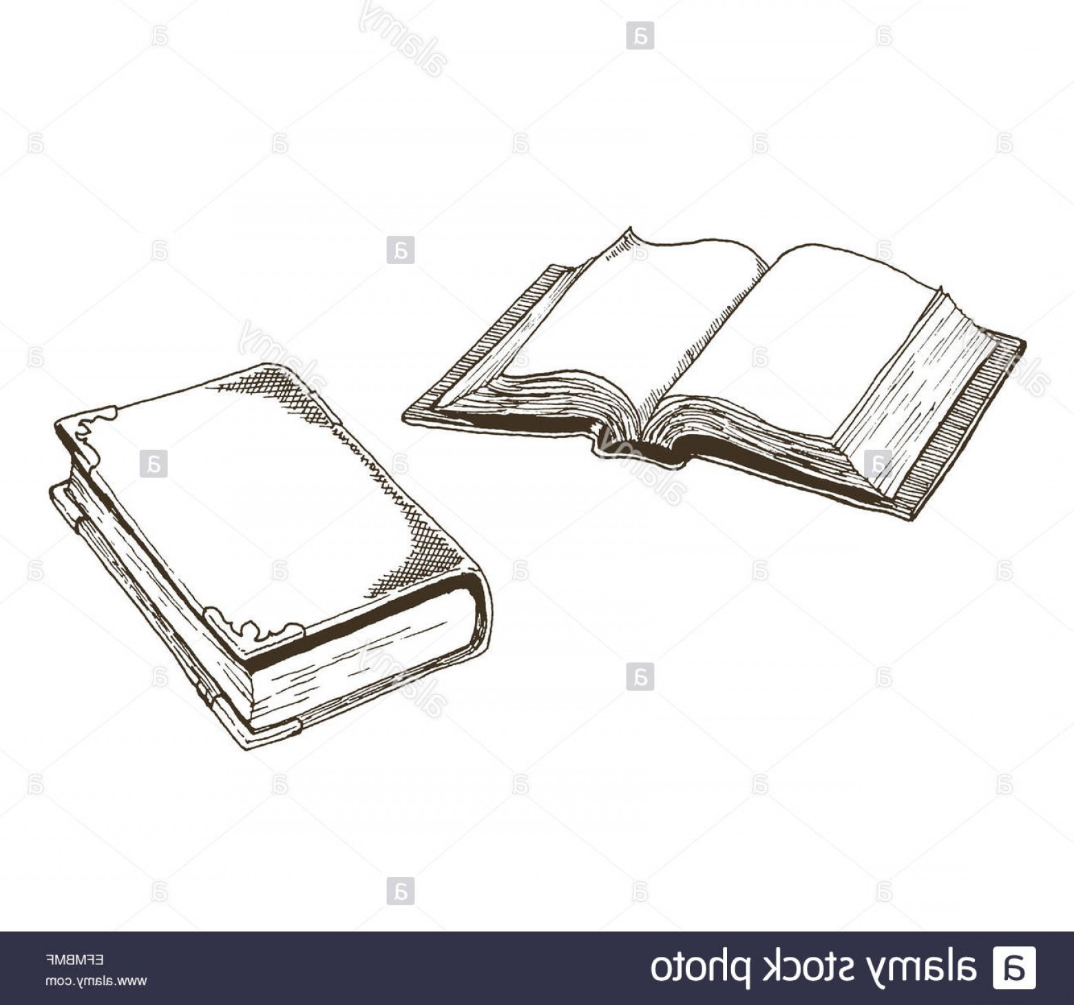1560x1461 Stock Photo Old Antique Books Vector Drawings Of An Open Book And