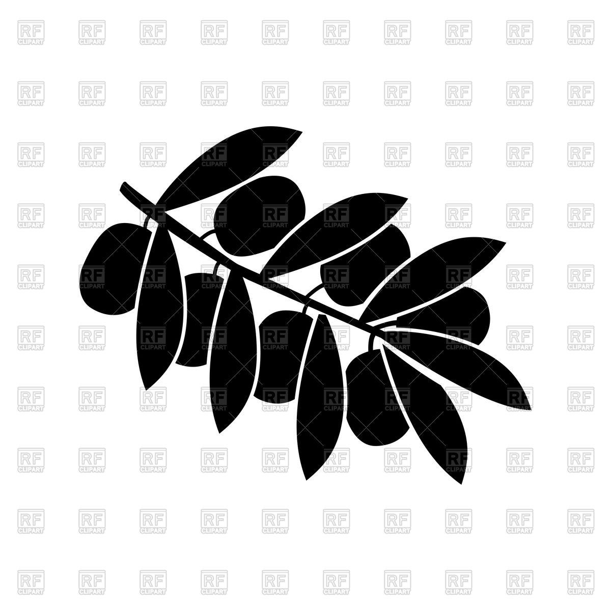 1200x1200 Olive Branch