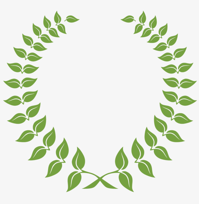 650x668 Olive Branch Vector Material, Vector Material, Olive Leaf