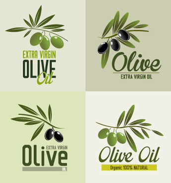 345x368 Olive Branch Free Vector Download (1,528 Free Vector) For