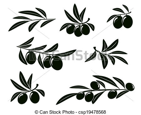 450x367 Set Of Olive Branch. Set Of Isolated Olive Branches On White
