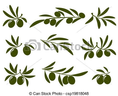 450x367 Clip Art Olive Branch Olive Branch Set On White Background Eps