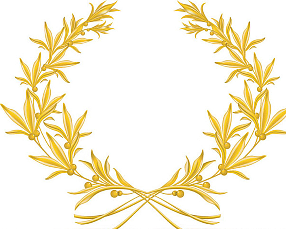994x794 Golden Olive Branch Vector Picture Free Download Eps Files