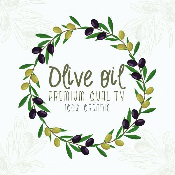 600x599 Olive Branch Wreath Olive Branch Wreath Olive Branch Wreath