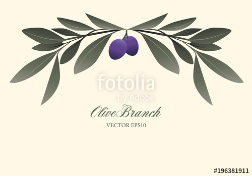 500x350 Olive Branch Wreath Isolated. Vector Illustration Stock Image And