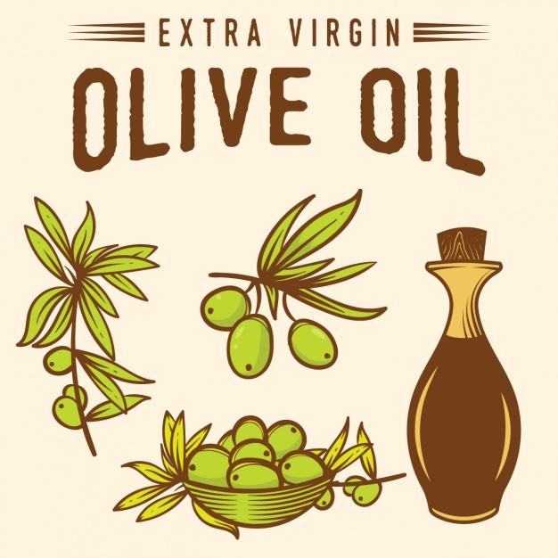 626x626 Olive Oil Background Design Vector Free Download