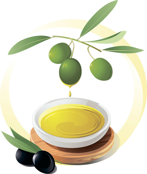 506x600 Olives And Olive Oil Vector Free Vector In Encapsulated Postscript