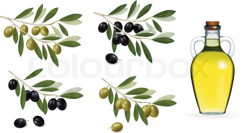 800x437 Vector Illustration. Big Set With Green And Black Olives And