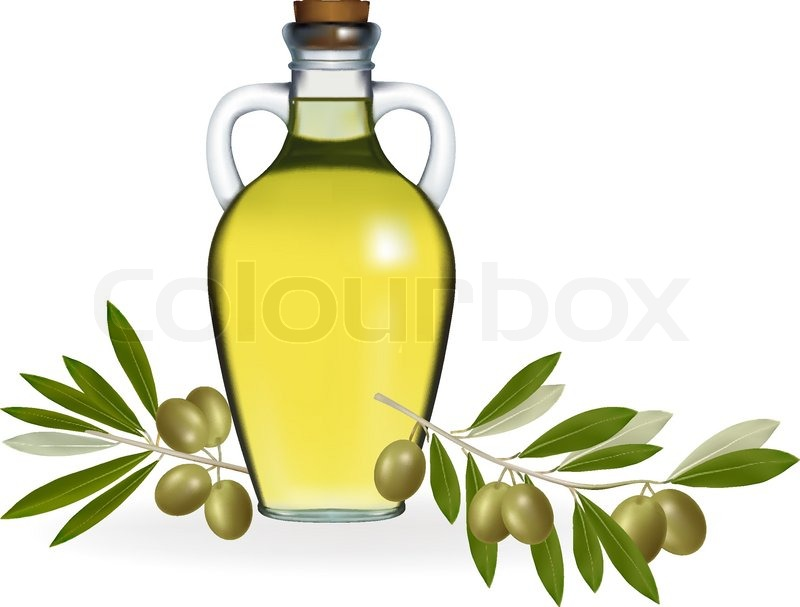 800x607 Vector Illustration. Olives With Bottle Of Olive Oil. Stock