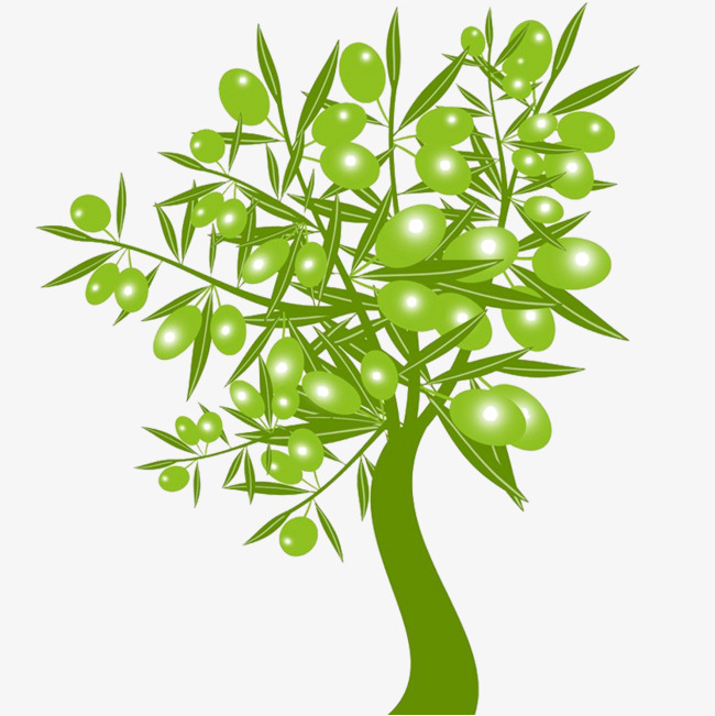 650x651 Olive Tree Download, Tree Clipart, Trees, Vector Png Image And
