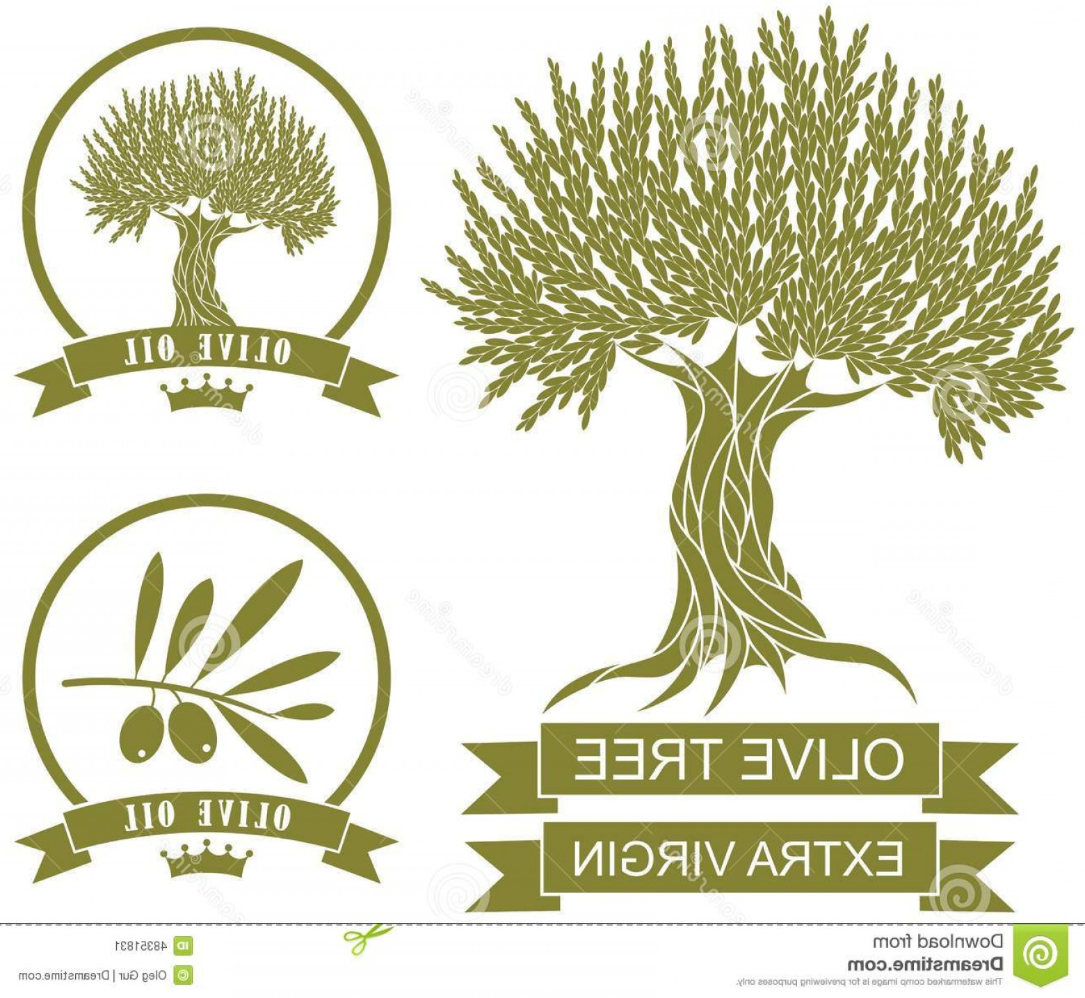 1560x1435 Stock Illustration Olive Tree Vector Illustration Eps Image Arenawp