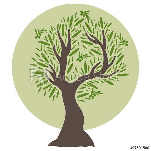 500x500 Illustration Of Flat Olive Tree. Vector
