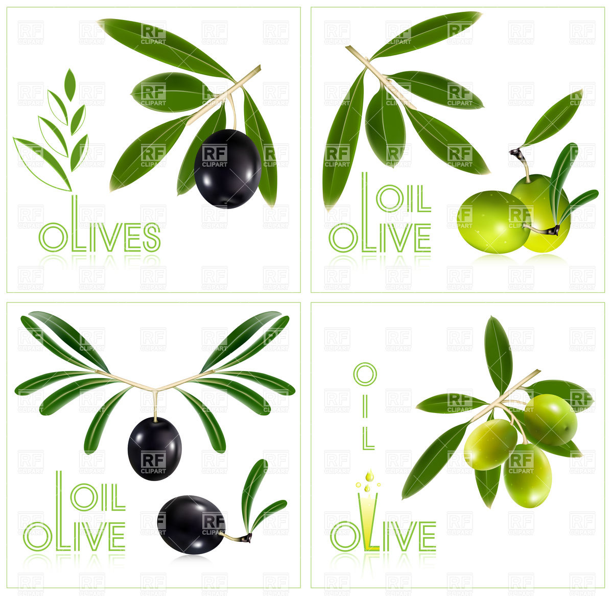 1200x1166 Green And Black Olives With Leaves Vector Image Vector Artwork