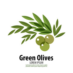 240x240 Olive Oil Photos, Royalty Free Images, Graphics, Vectors Amp Videos