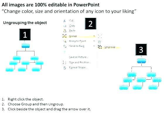 560x420 Free Organizational Chart Organization Vector Maker Online