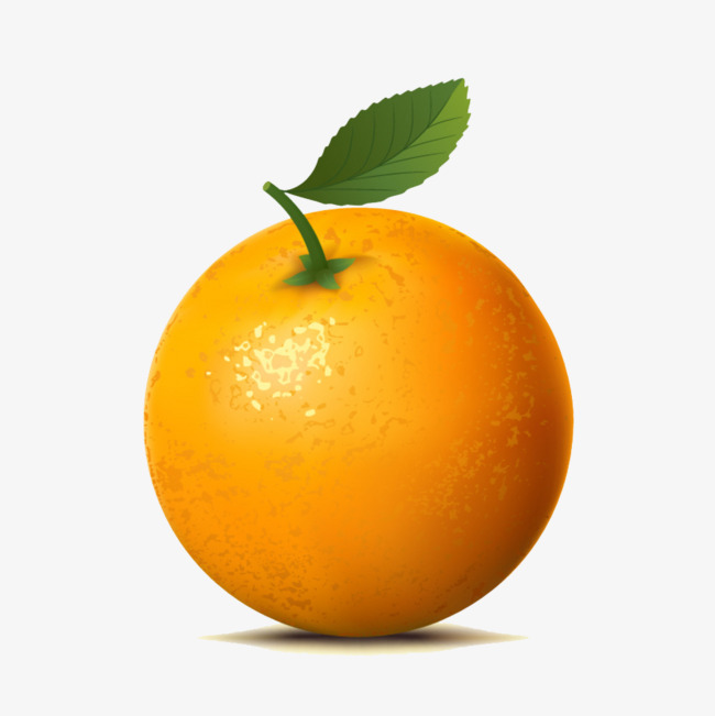 650x651 A Navel Orange, Orange, Fruit, Vector Png And Vector For Free Download