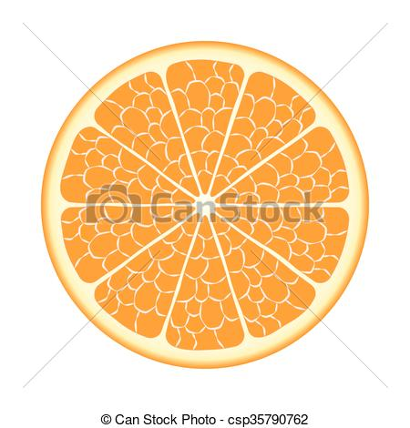 450x470 Cut Orange Fruit. Vector Eps10. Cut Ripe Orange Fruit Closeup