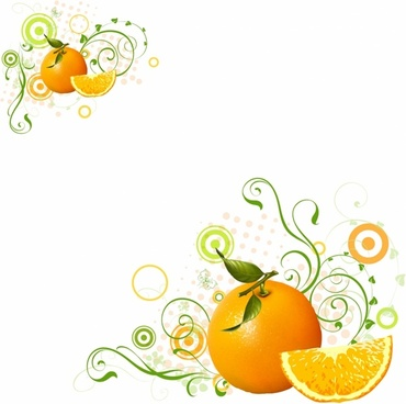 370x368 Orange Fruit Free Vector Download (4,210 Free Vector) For