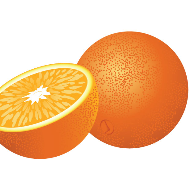 620x620 Free Download Of Fresh Orange Fruit Vector Graphic