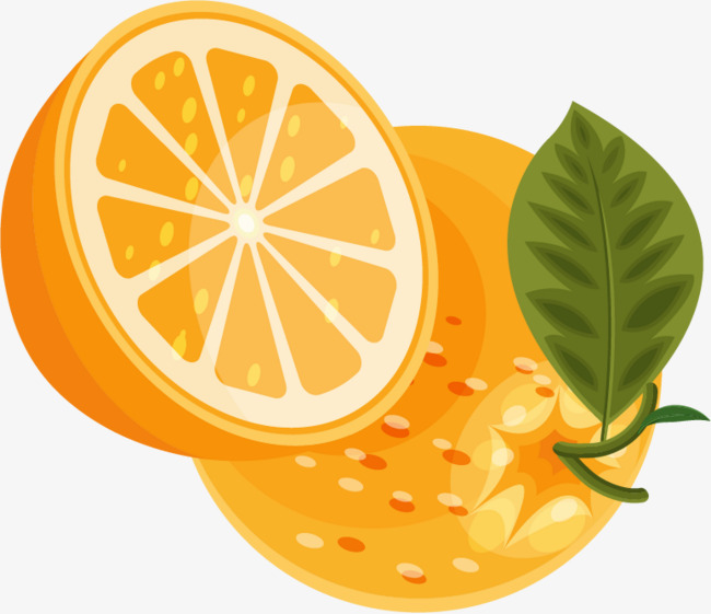 650x561 Png Orange Fruits Vector Material, Orange Vector, Orange Clipart