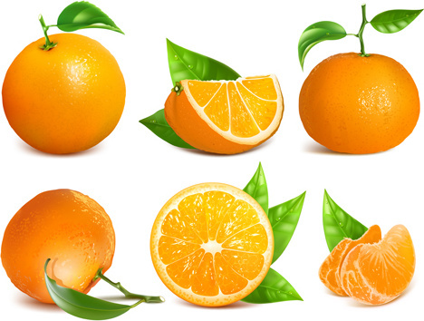 468x354 Vector Orange Fruit Leaves Free Vector Download (7,489 Free Vector