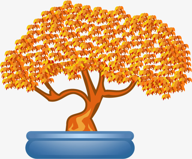 640x529 Orange Tree Bonsai, Orange Vector, Tree Vector, Orange Png And