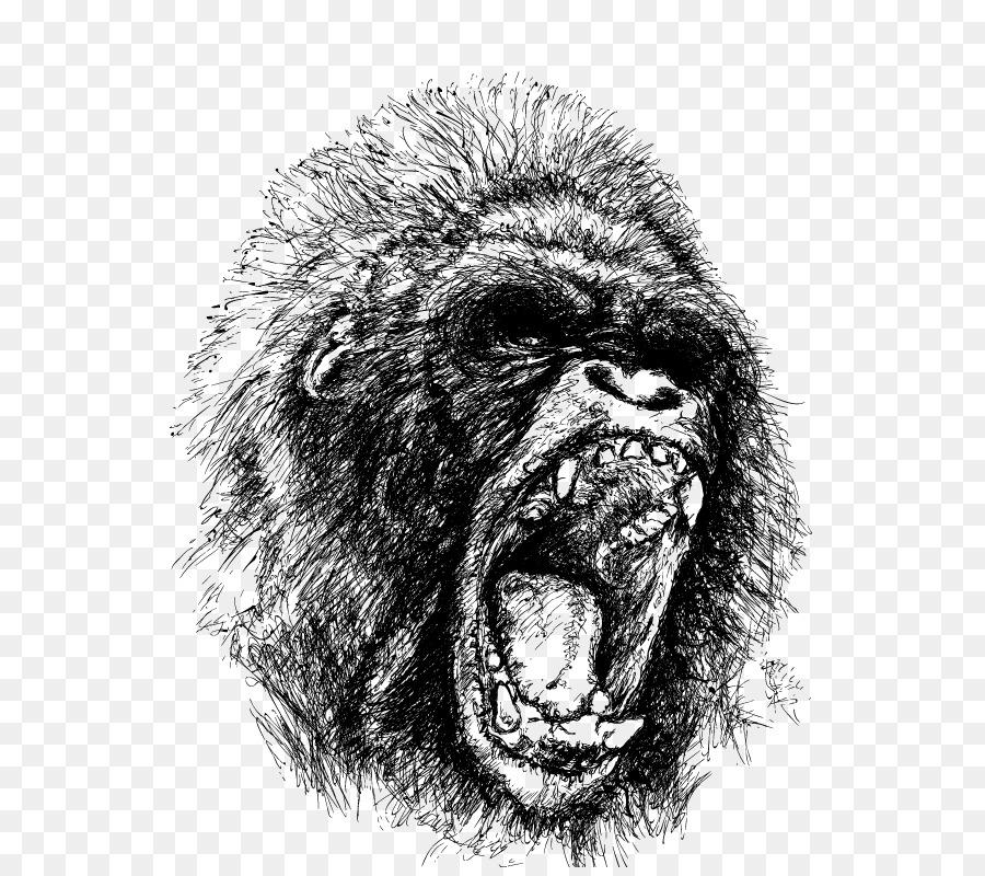 900x800 Download Western Gorilla Ape Drawing Orangutan Vector Orangutan