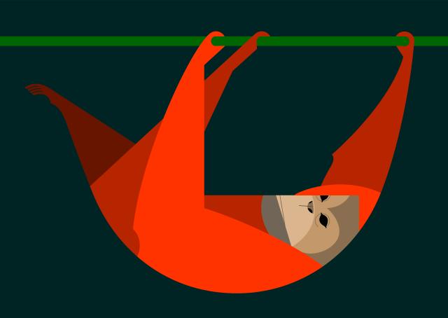 640x454 Orangutan