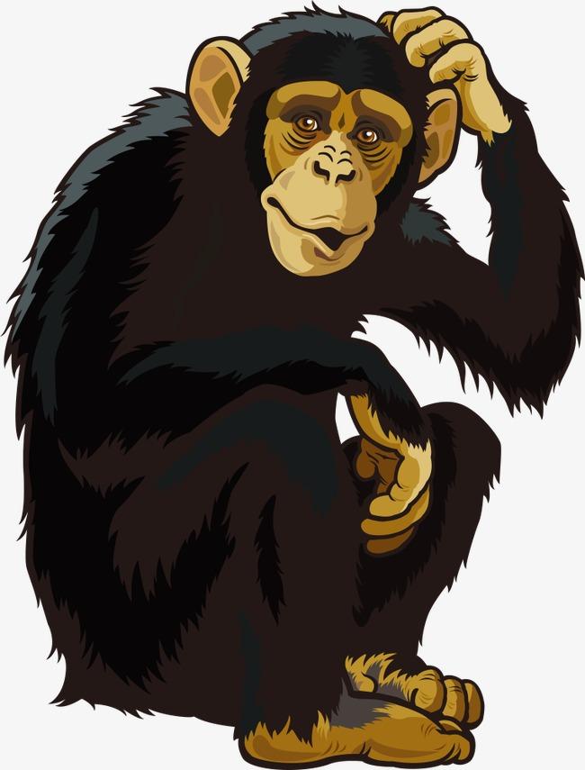 650x855 Vector Orangutan, Cartoon Animals, Vector Animals, Animal Png And