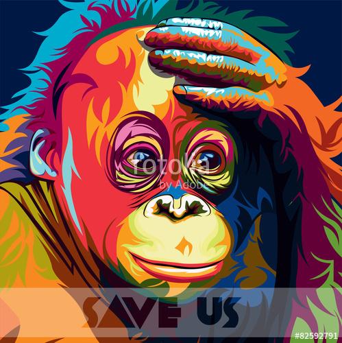 499x500 Orangutan Colour Vector Stock Image And Royalty Free Vector Files