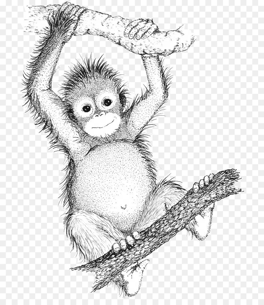 900x1040 Ape Drawing Bornean Orangutan Gorilla Sumatran Orangutan