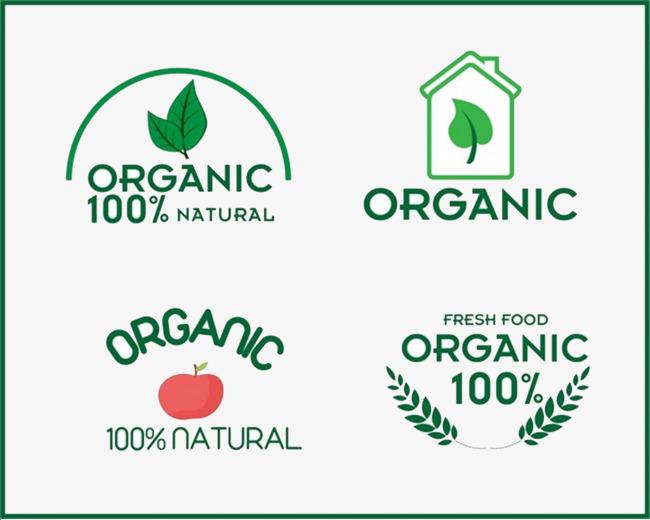 650x520 Organic Food Vector, Food Vector, Food Clipart, Organic Png And
