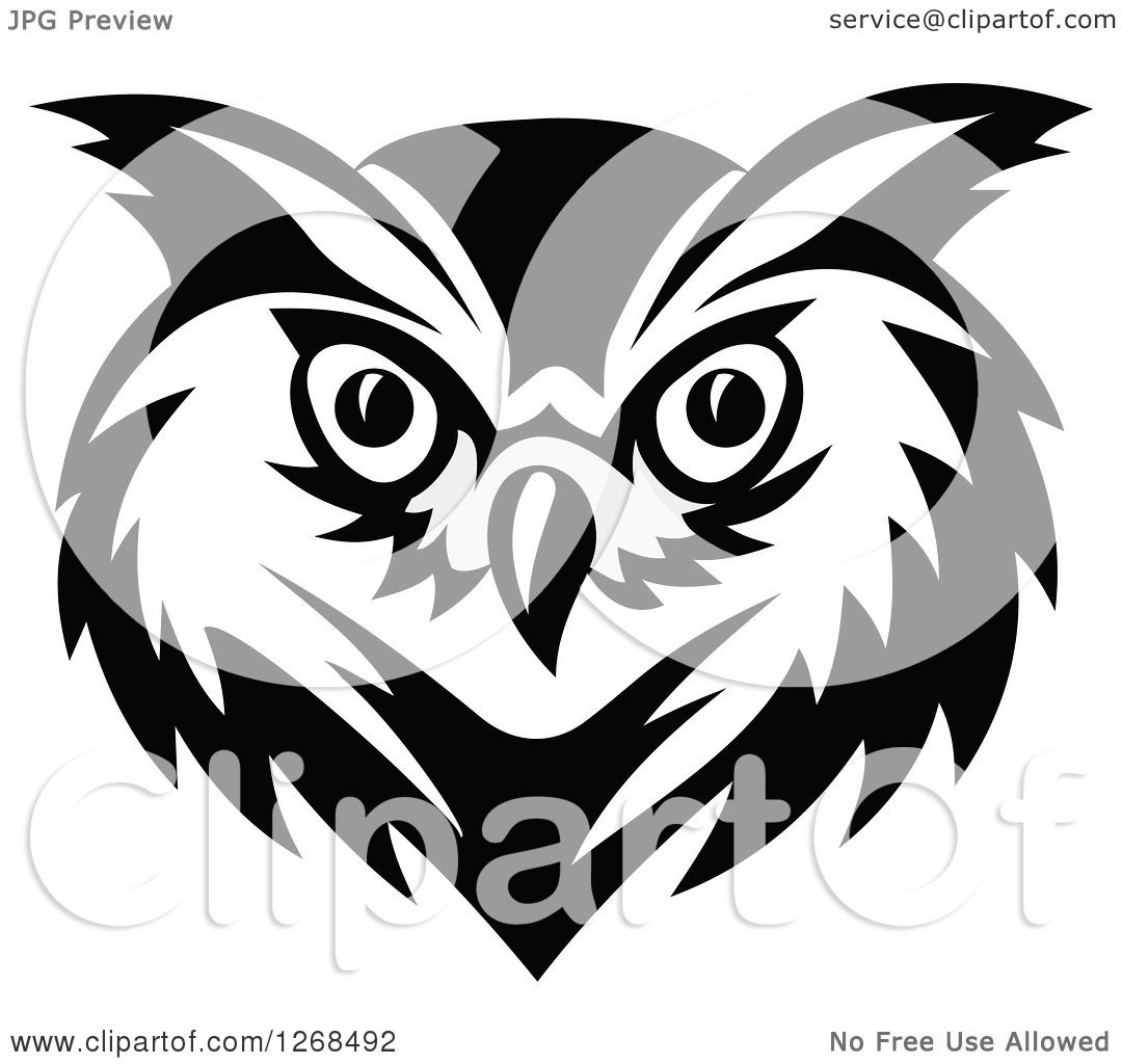 1080x1024 Clipart Of A Black And White Owl Face
