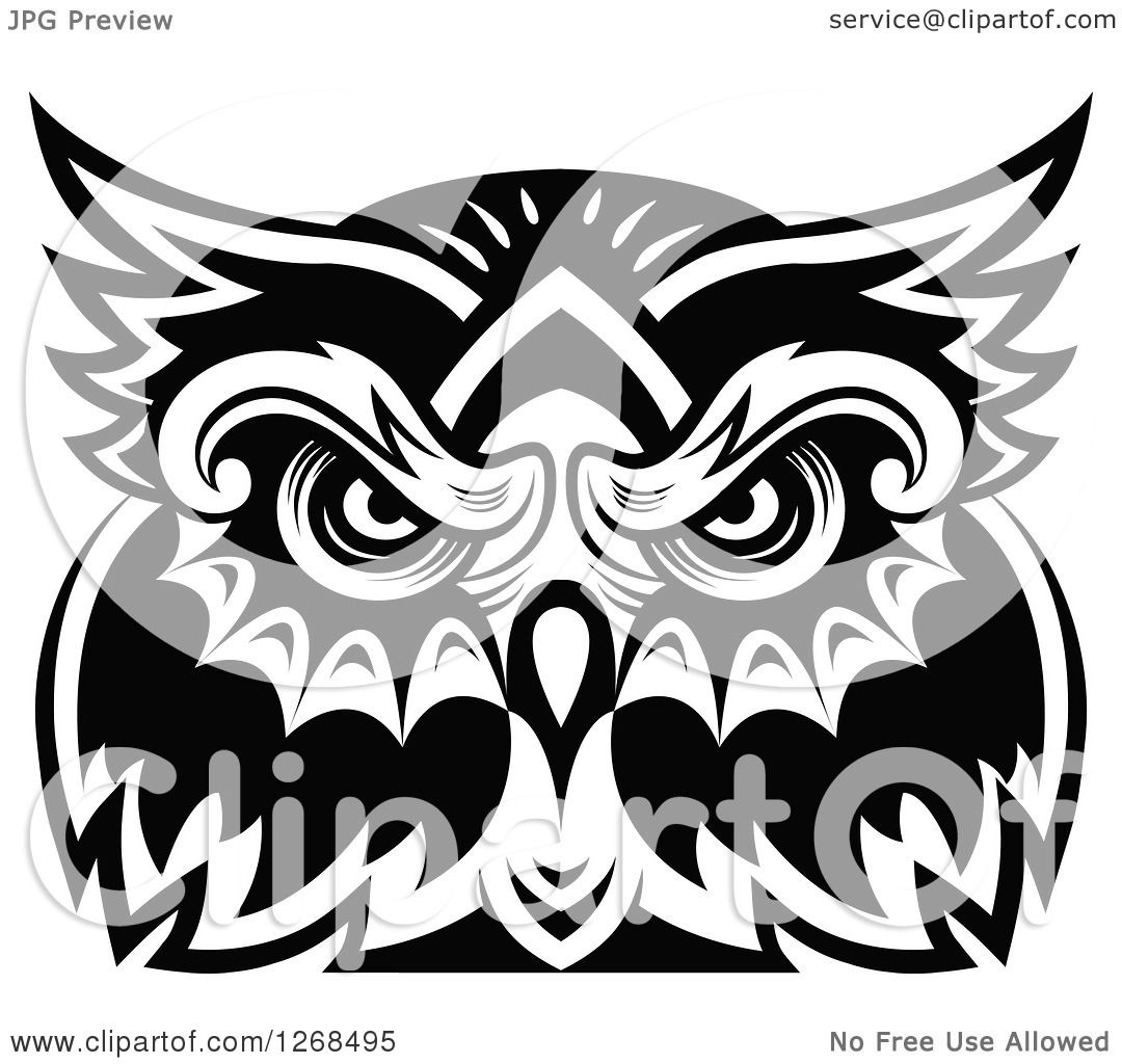 1080x1024 Clipart Of A Black And White Owl Face 4