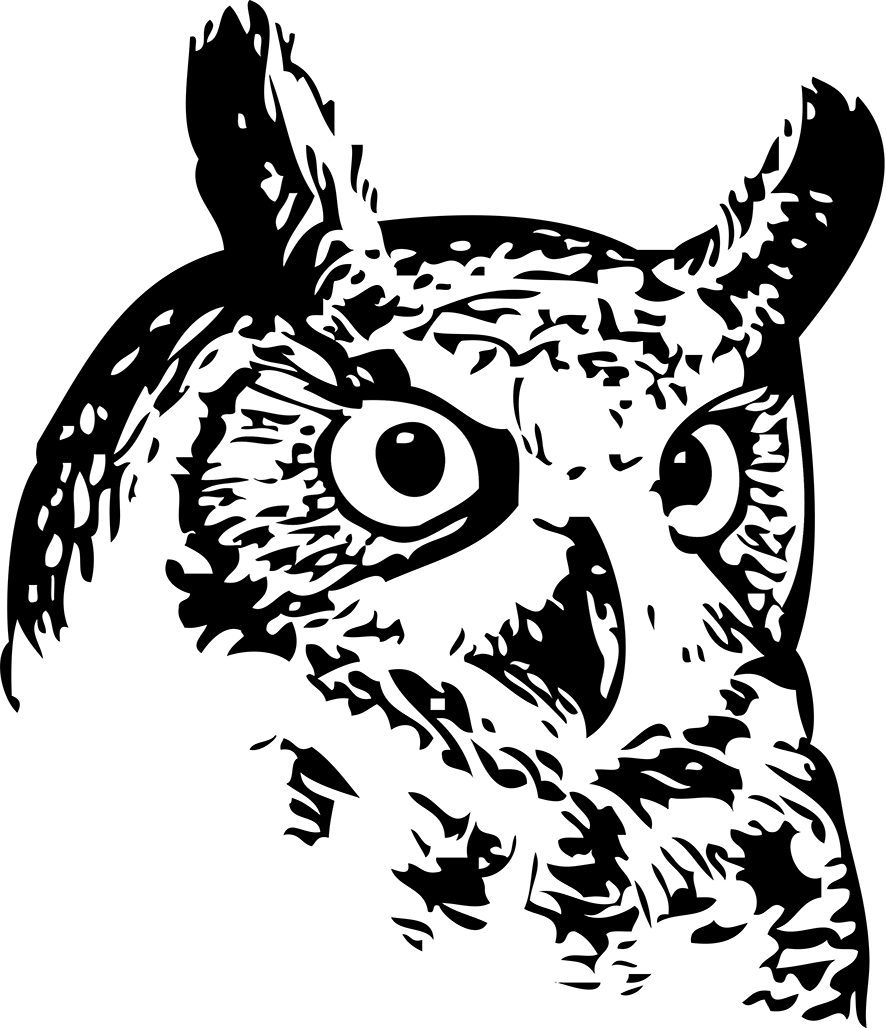 886x1028 Collection Of Free Vector Owl Face. Download On Ubisafe