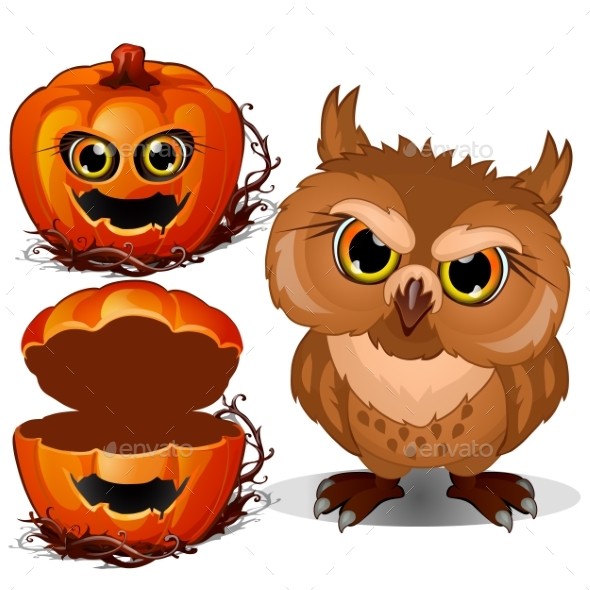 590x590 Angry Owl And Halloween Scary Pumpkin Face. Vector By Lady Luck