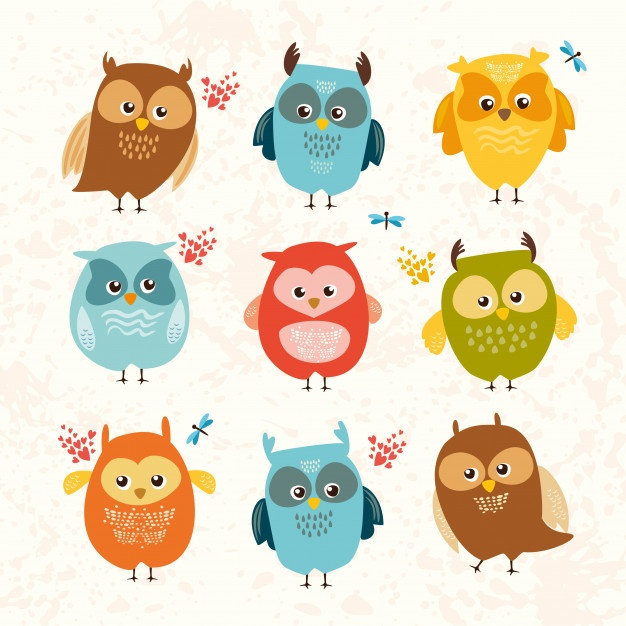 626x626 Owl Face Vectors, Photos And Psd Files Free Download