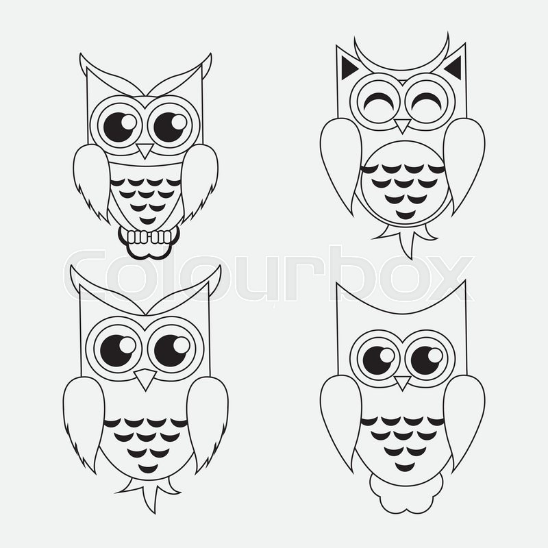 800x800 Owl Concept With Icon Design, Vector Illustration 10 Eps Graphic
