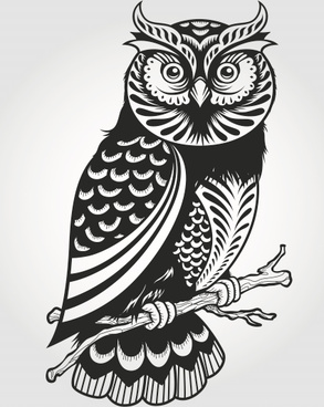 293x368 Owl Free Vector Download (288 Free Vector) For Commercial Use
