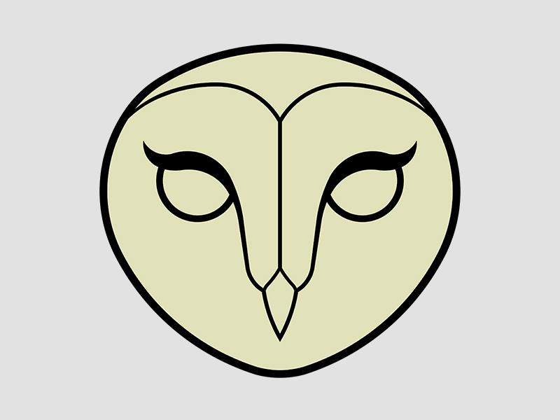 800x600 Barn Owl By Jeremy Wright